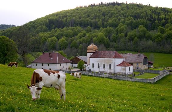 paysage-Haut-Doubs-2.jpg