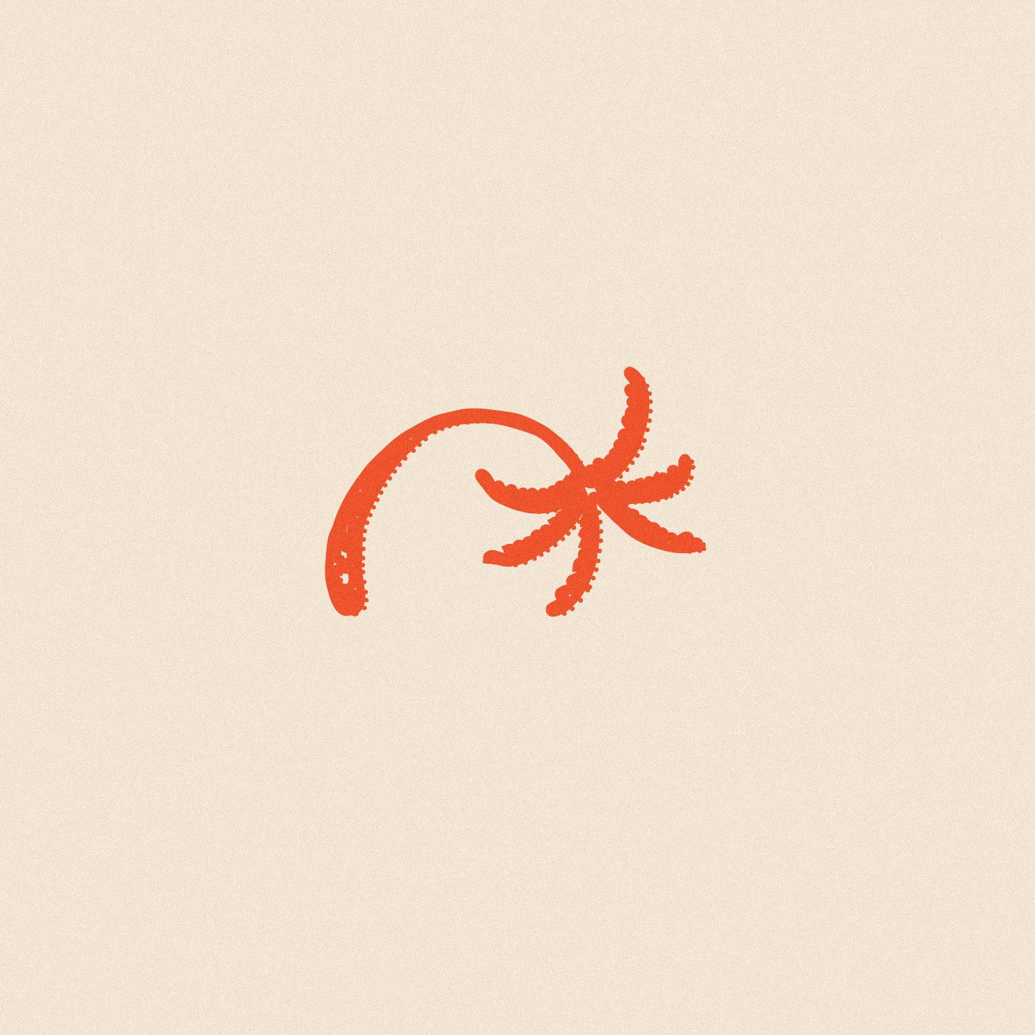 CIRCA-NOON_Current-Flavors-01_2.jpg