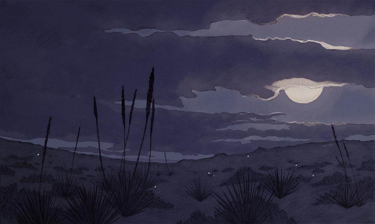 shwippie_desertgrass.jpg