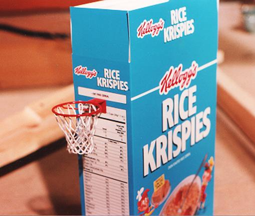 Miniature basketball hoop and net