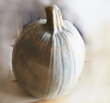stunt gourd