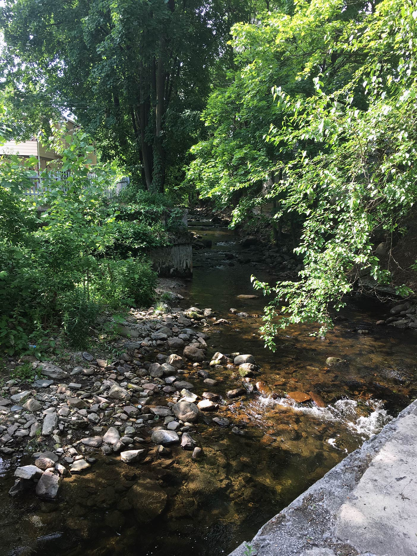 Martins Creek near Easton, Pennsylvania.