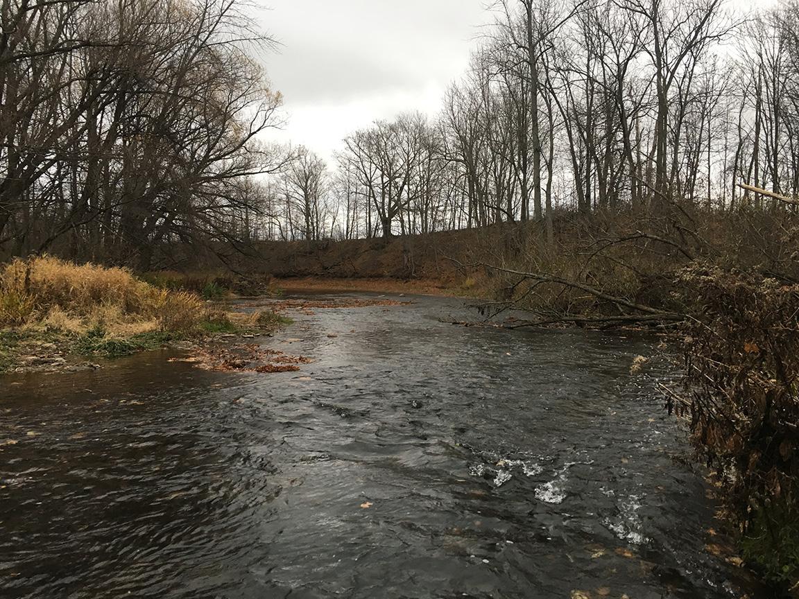 Looking downstream one of Johnson Creek's many runs.
