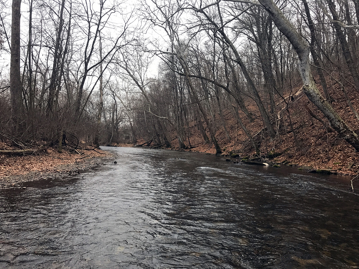 Looking upstream on the Yellow Breeches Creek.