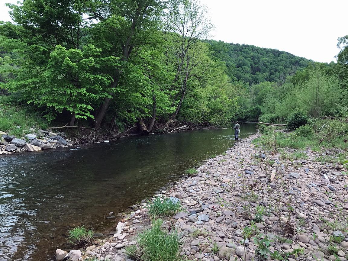 Mike Mamrak fishing the long run on the Muncy Creek.