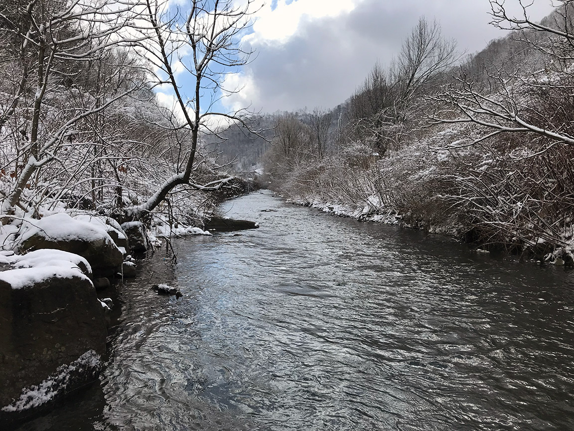 The first run I fished on the Elkhorn Creek.