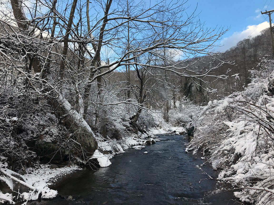 The view on the upper reaches of the Elkhorn Creek.