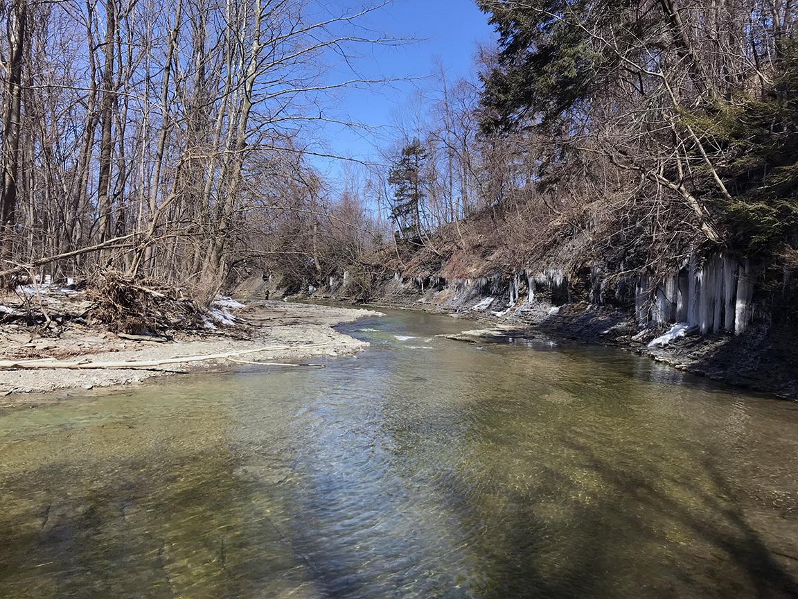 Looking downstream on 20 Mile Creek.