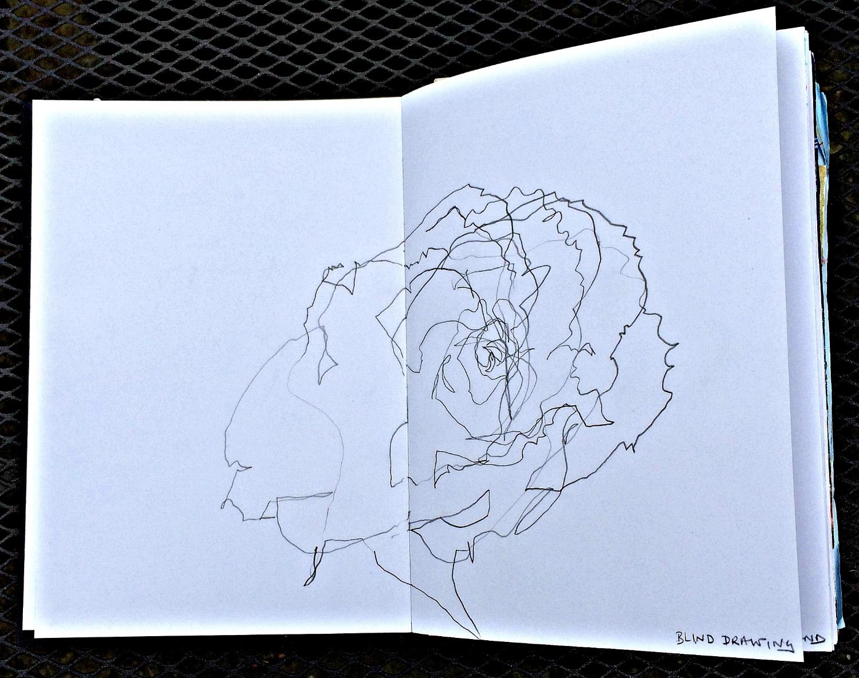 Sketchbook: rose drawn 'blind'