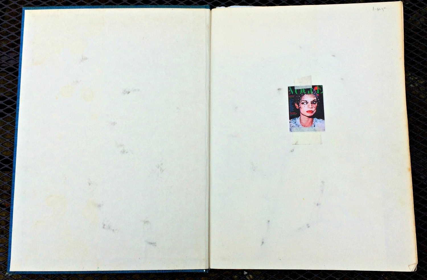 Altered Book (Disco Dance Moves): Bianca Jagger