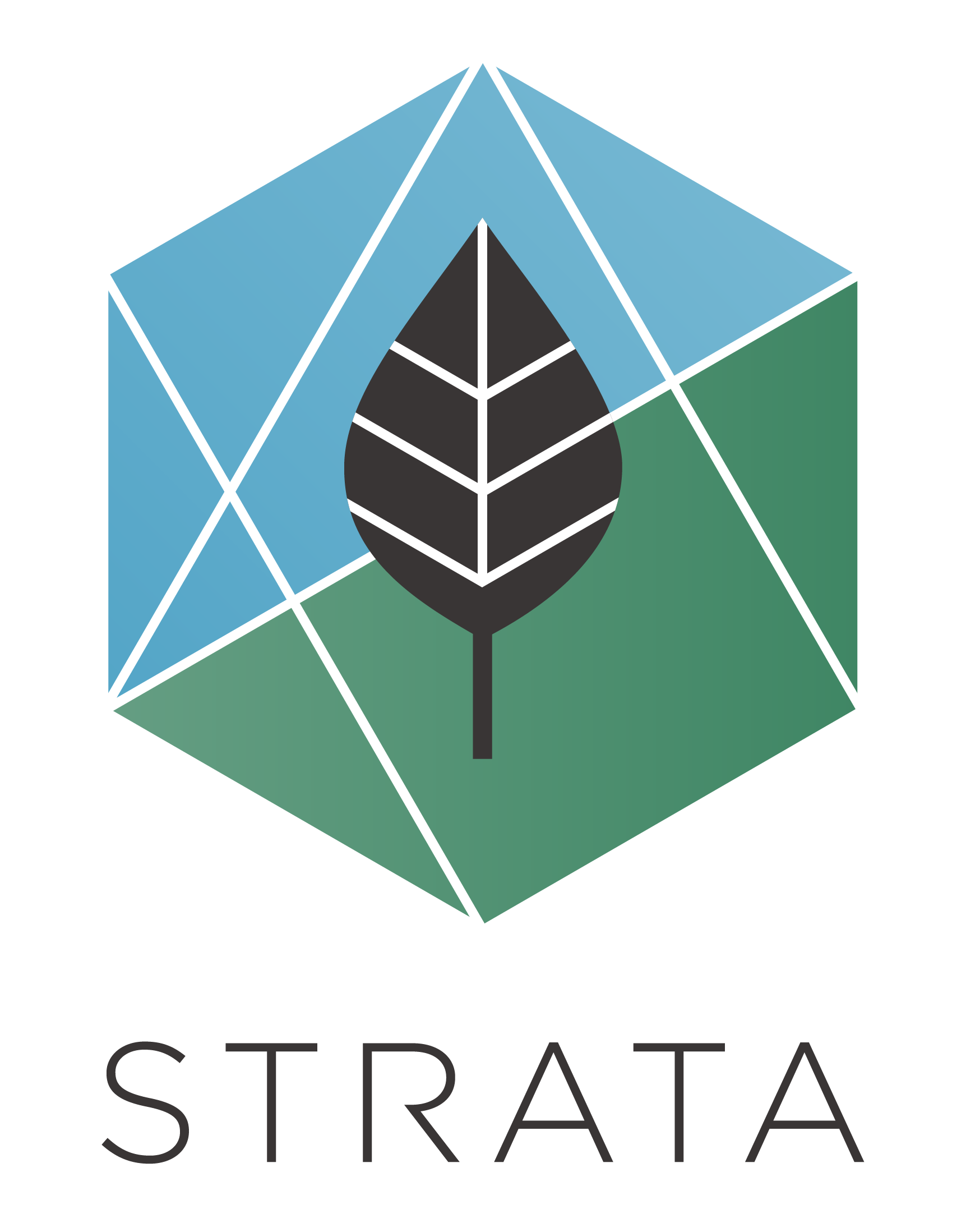 Official Strata Logos-01.png