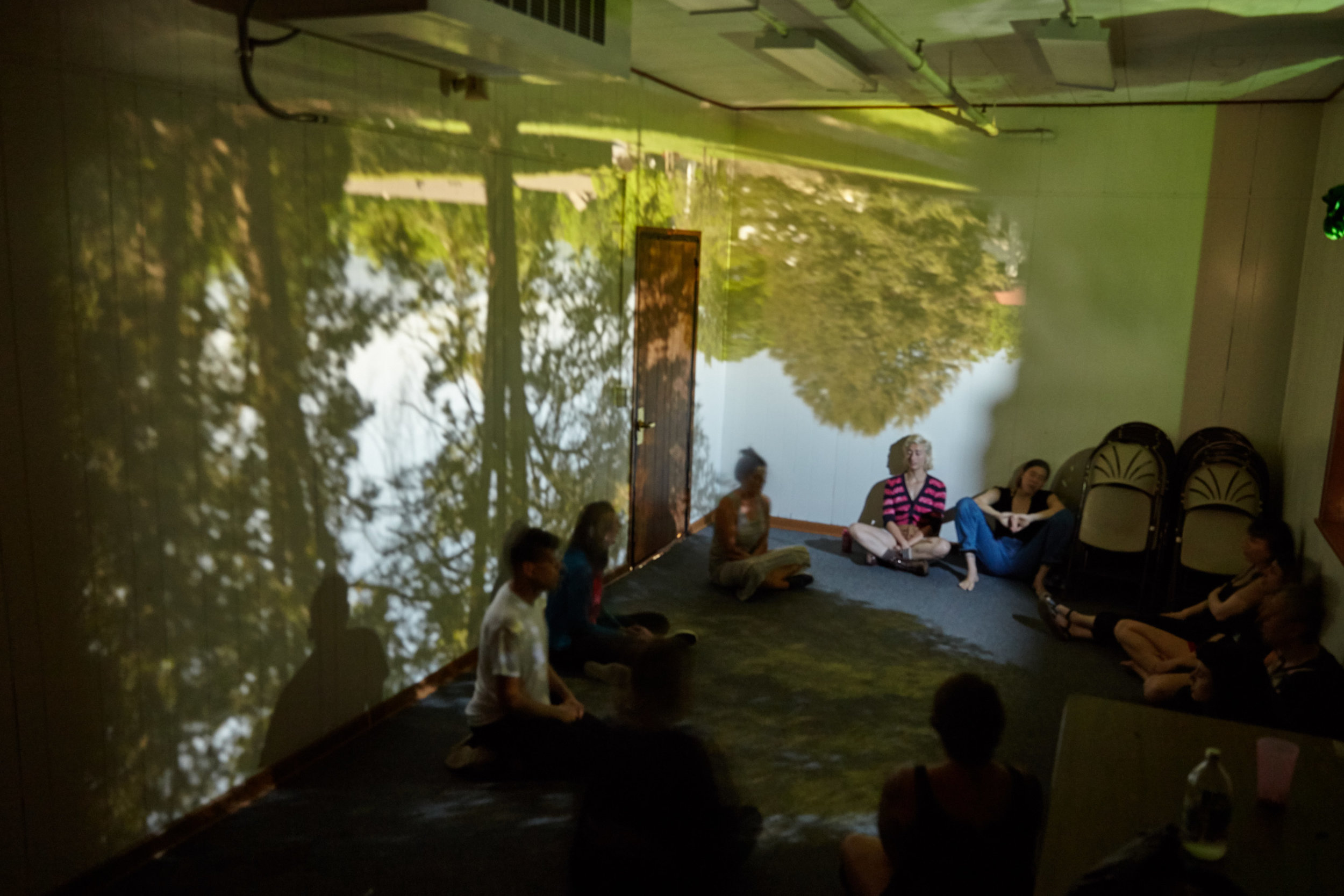 Photo by Suzi Sadler (taken in Sophie Bolla's class-built-classroom-sized camera obscura)