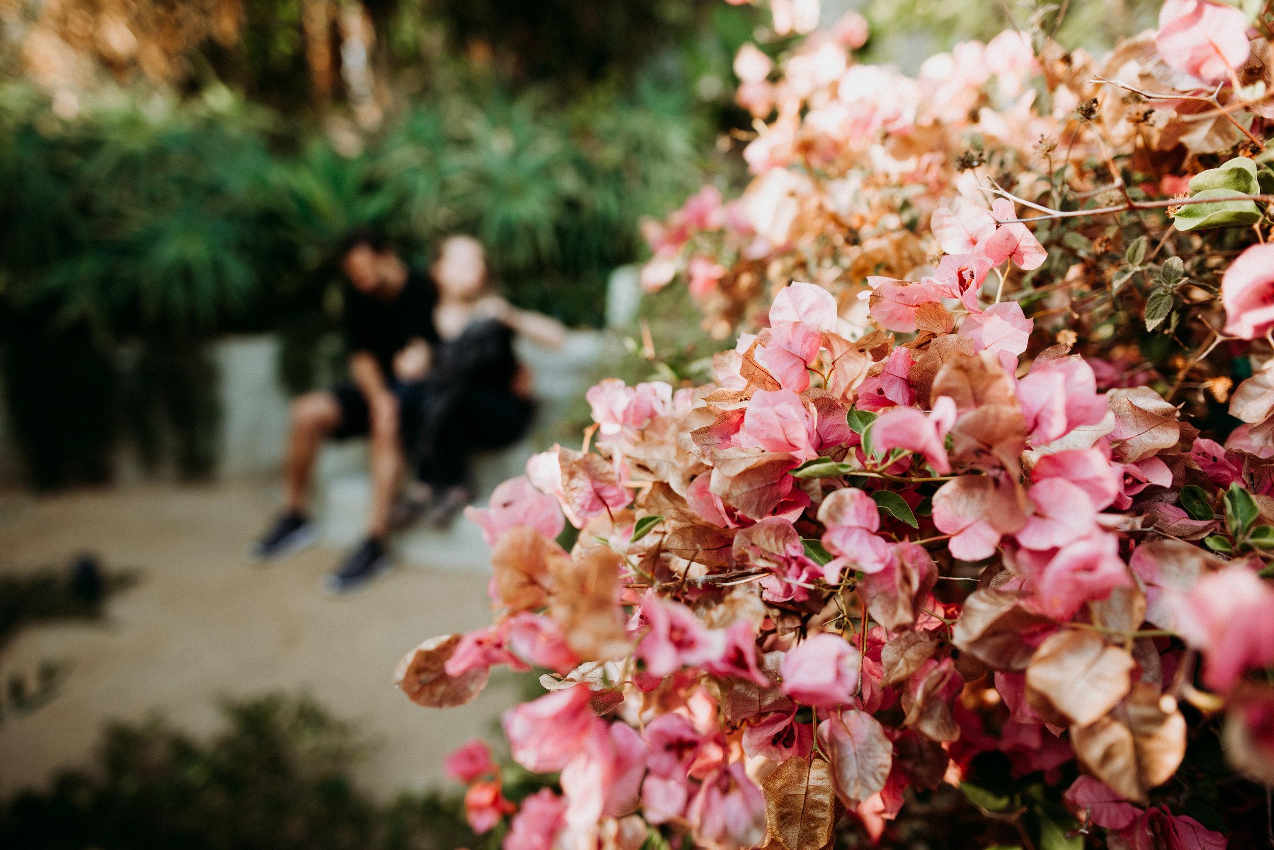 LUMA Photography San Francisco