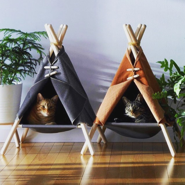 LU loves ••• Uniquely different | #catnapping 🐱 💤 regram @homeadore_decor . . . . . . . . . #cutecat #uniquelydifferent #pethouses #catlovers #cats #baysidemelbourne #smallbusiness #lilyurban #artificialplants #madetoorder #interiorstylistsmelbourne #melbourneinteriordesigners #teepee #cathouses #cutecats