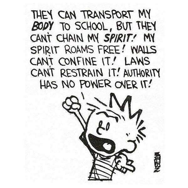 Calvin Spirit