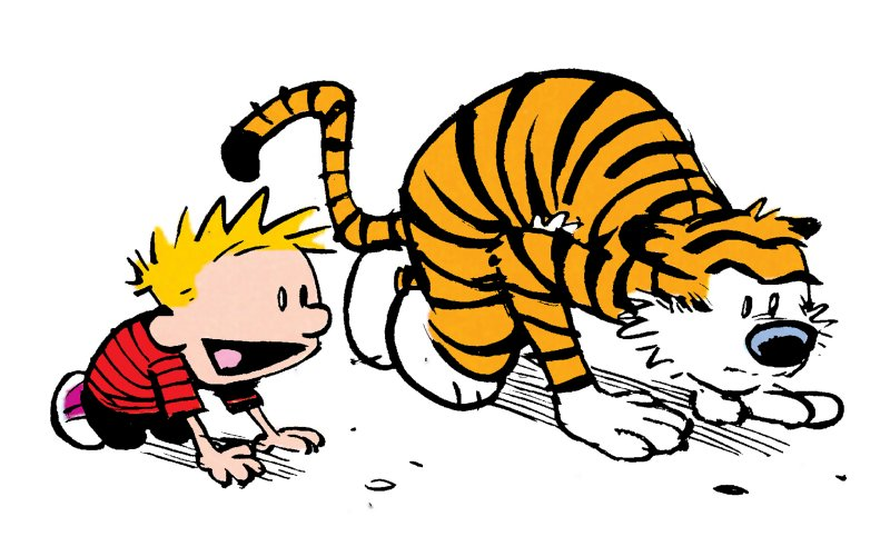 Calvin at Start Line.jpg