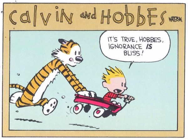Calvin+Ignorance.jpg