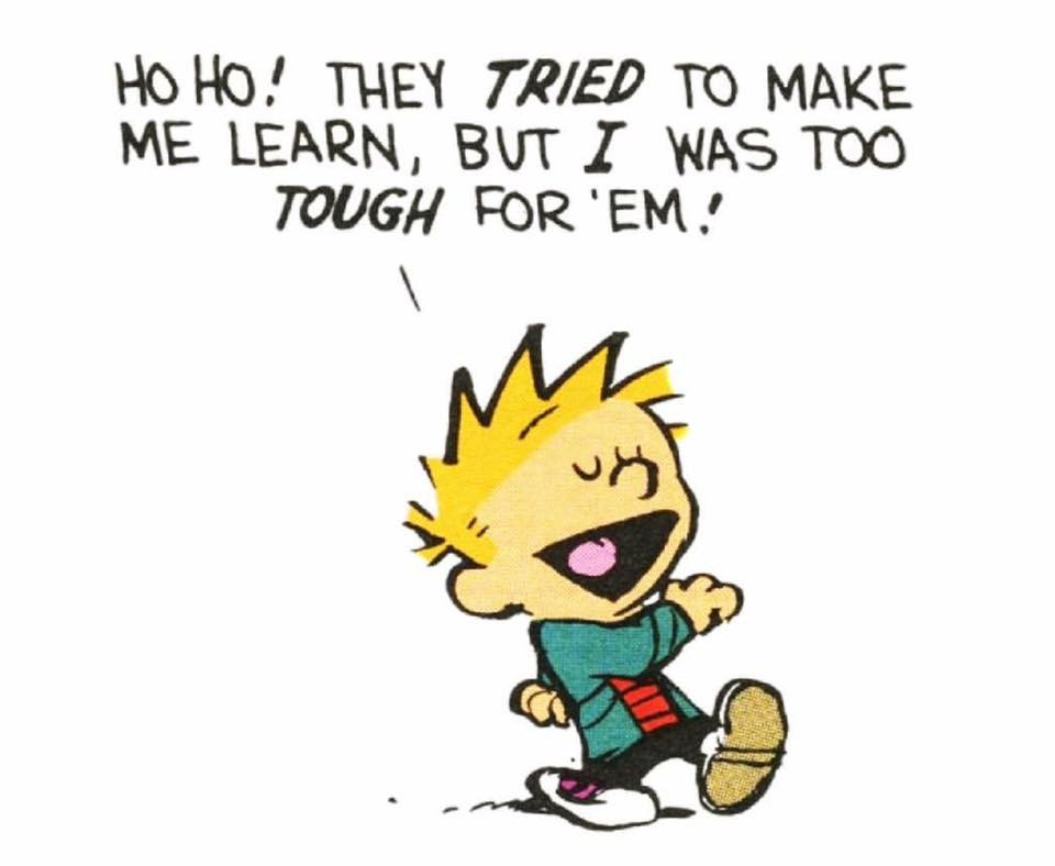Shamelessly picked from Mr Bill Watterson's creation, Calvin & Hobbes, because it is so brilliant, and will carry on doing it.