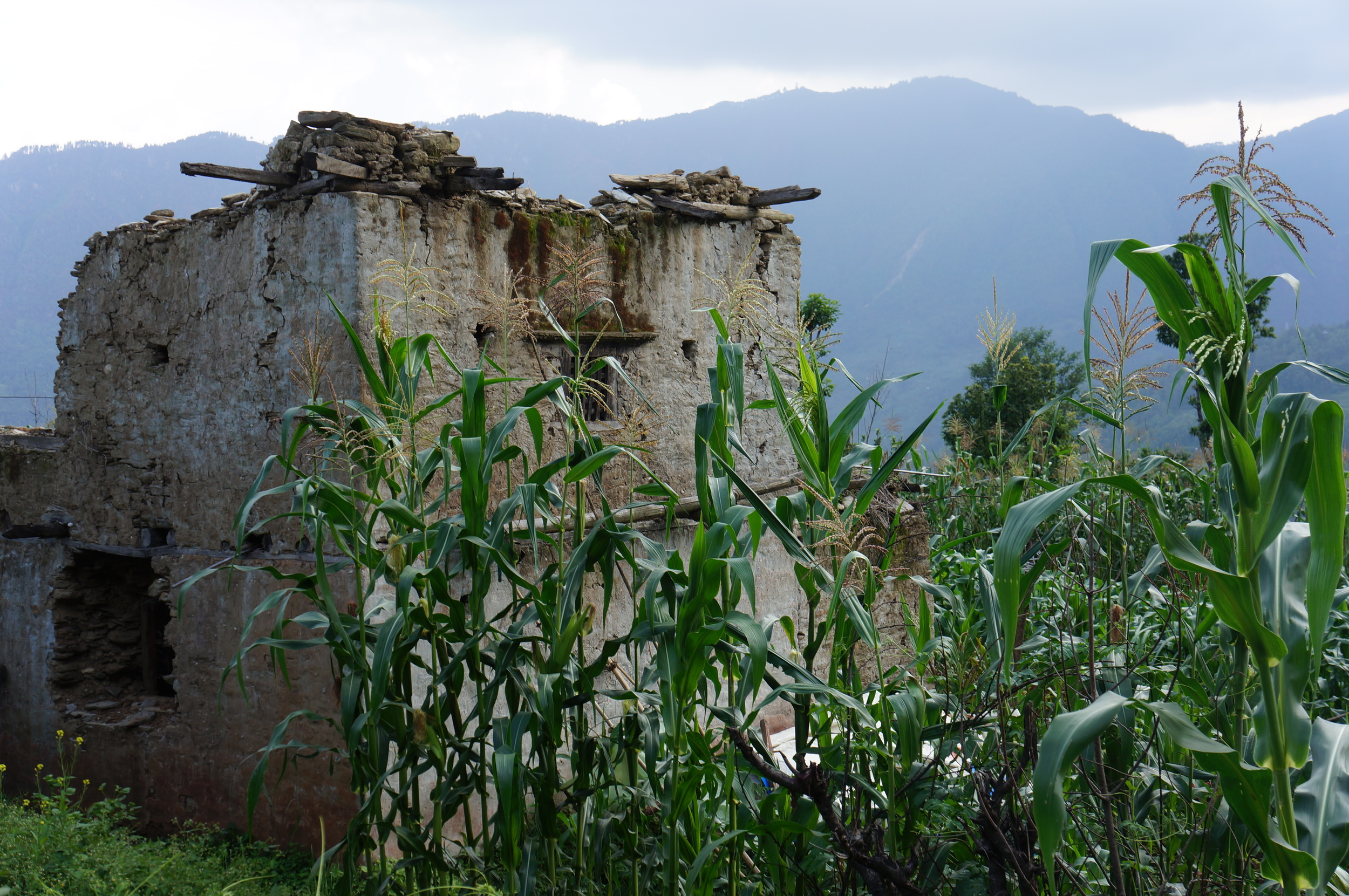 Photo: DiCarlo 2016 | Home destroyed by the 2015 earthquake in Sundrawati, Dolakha District, Nepal
