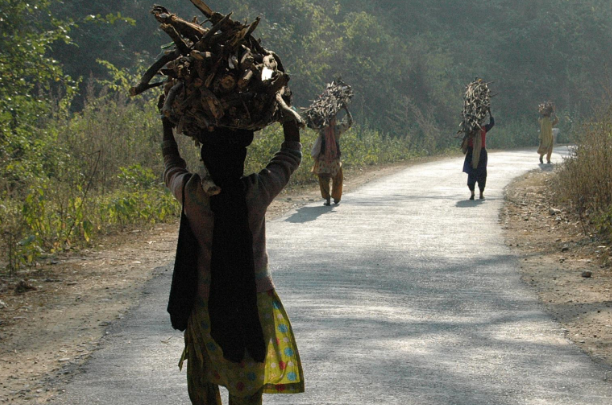 Indian woman with headloads of wood for cooking in the lower Himalayas.  ST PHOTO: NIRMAL GHOSH