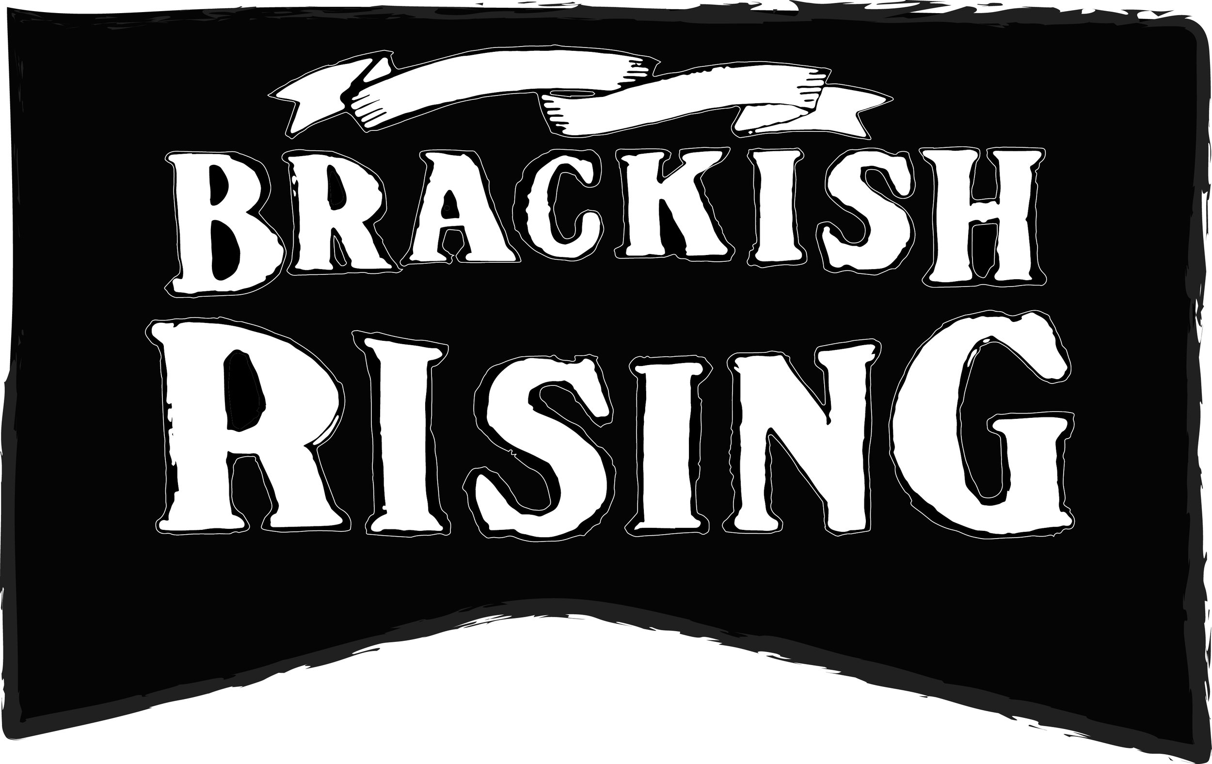 brackish rising logo_flag (1).jpg