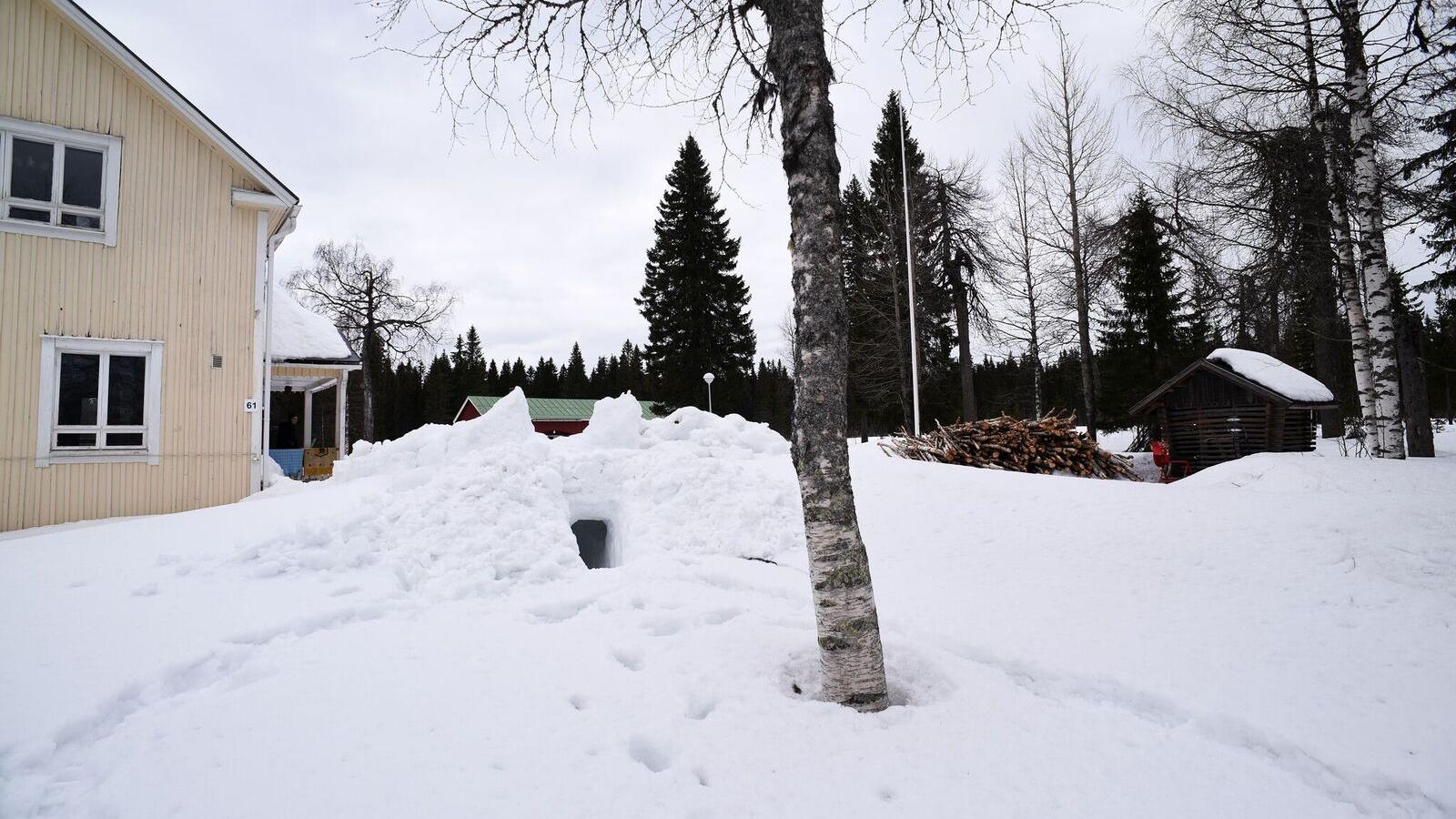 Survival Snow Cave_02 (1).jpg