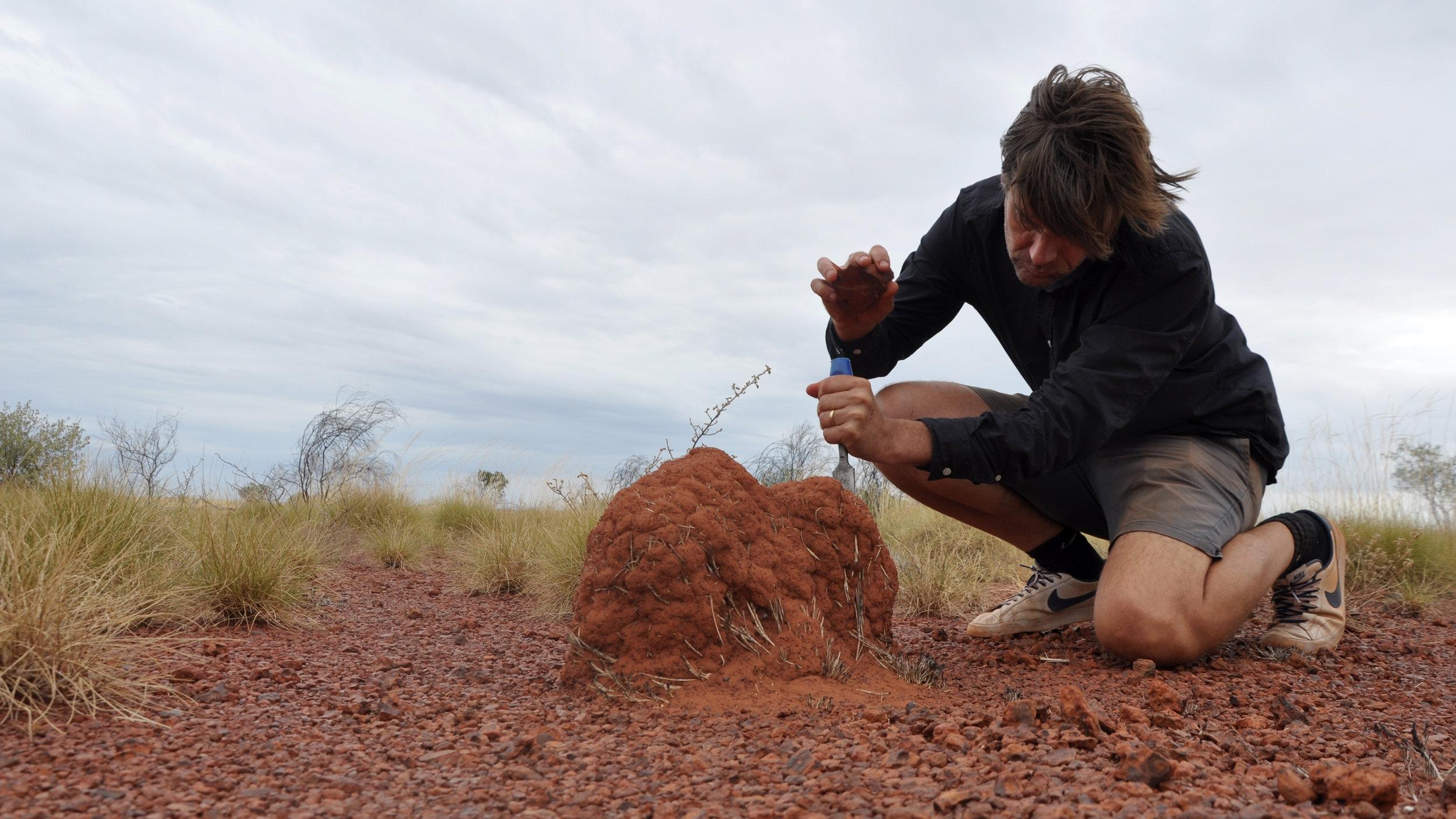 Tor Lindstrand gathering pigments in the Tanami Desert.jpg