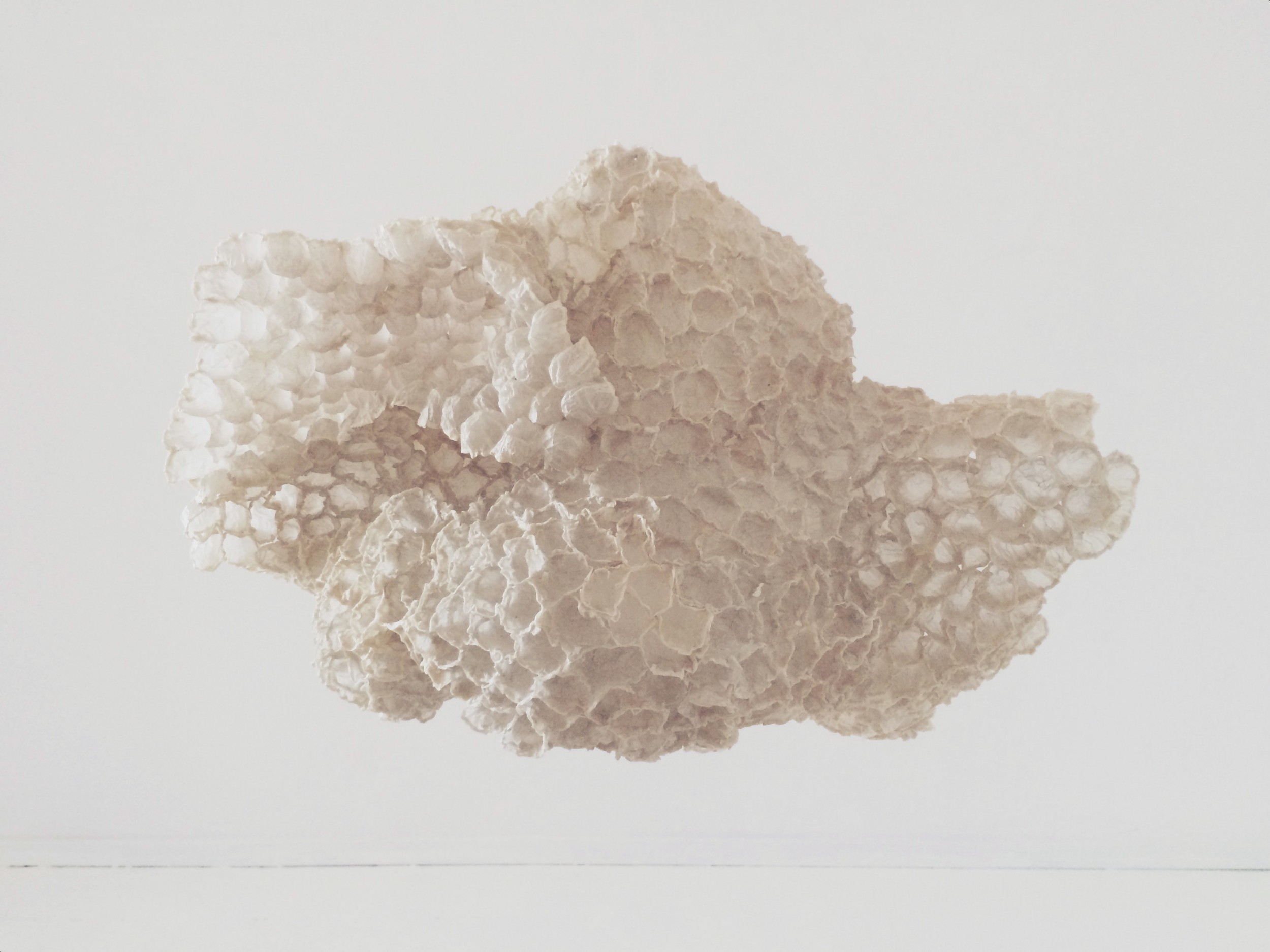 Mary Button Durell, The Cloud