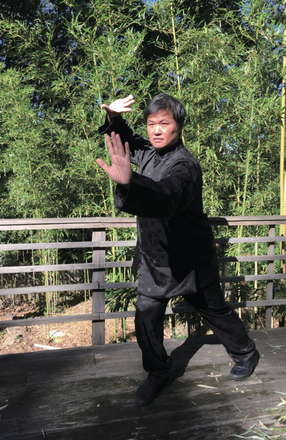 Clayton Shiu Flying Tortoise.jpg