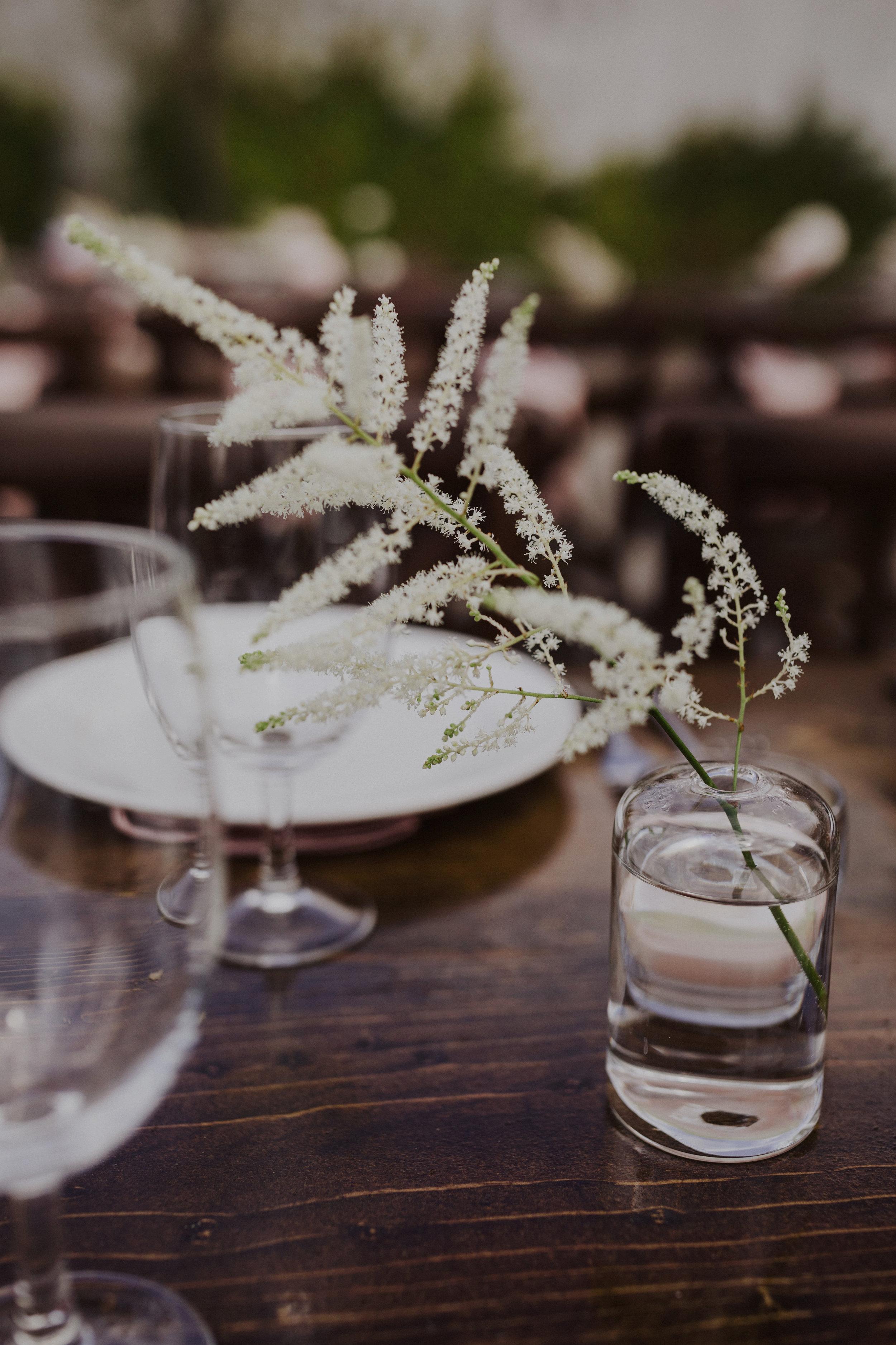 milagro-winery-wedding-1309.jpg