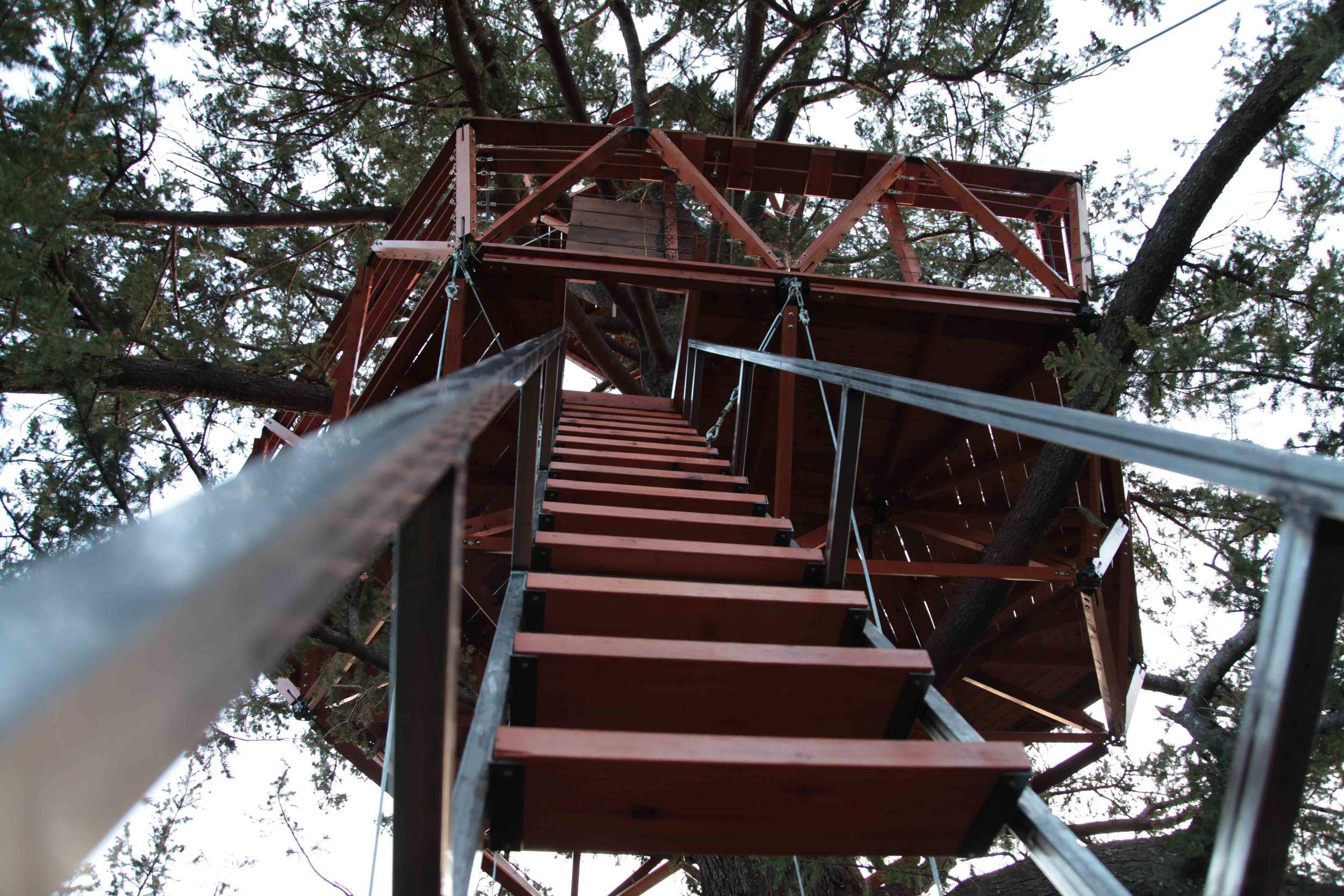 o2treehouse_tetrafloorsystem_ladder.jpg