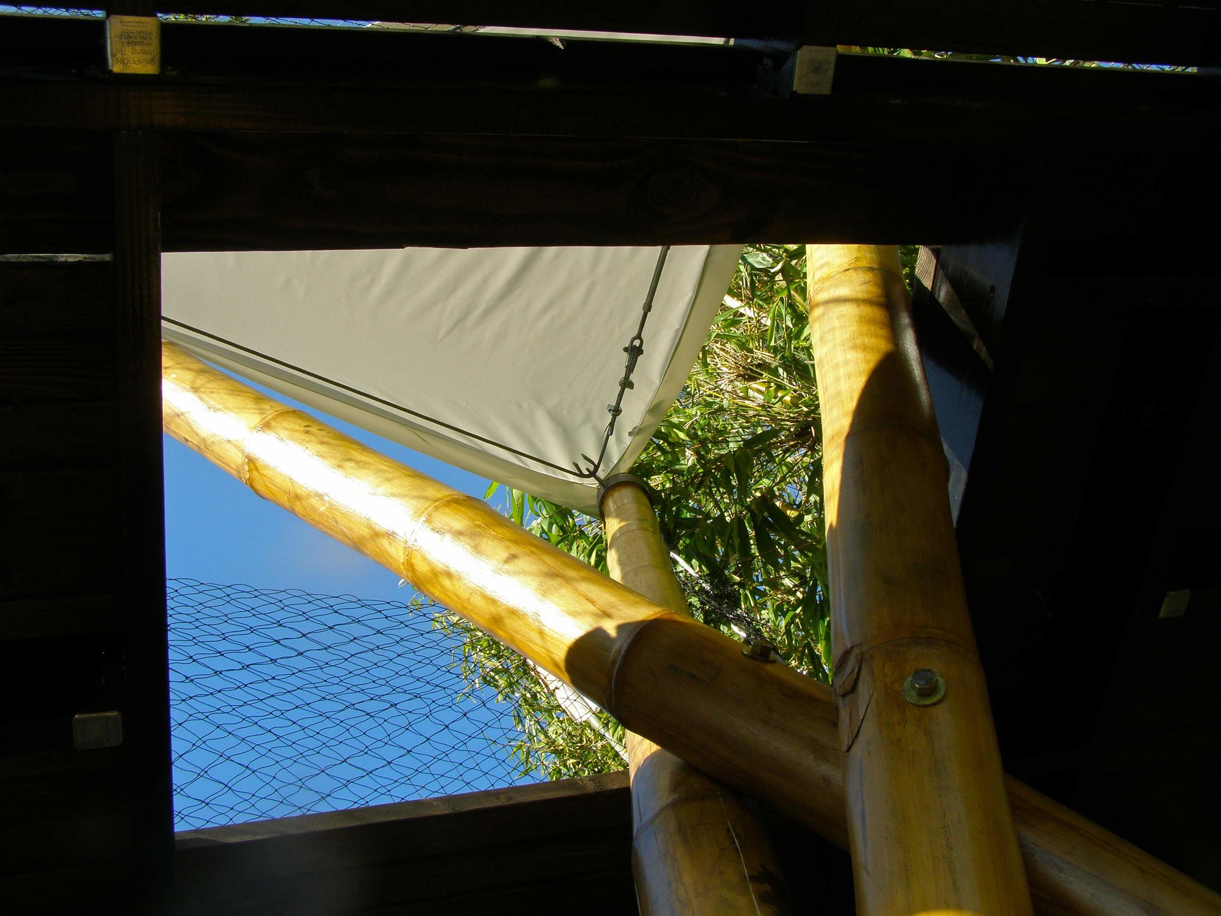 BambooPlay-Up.jpg