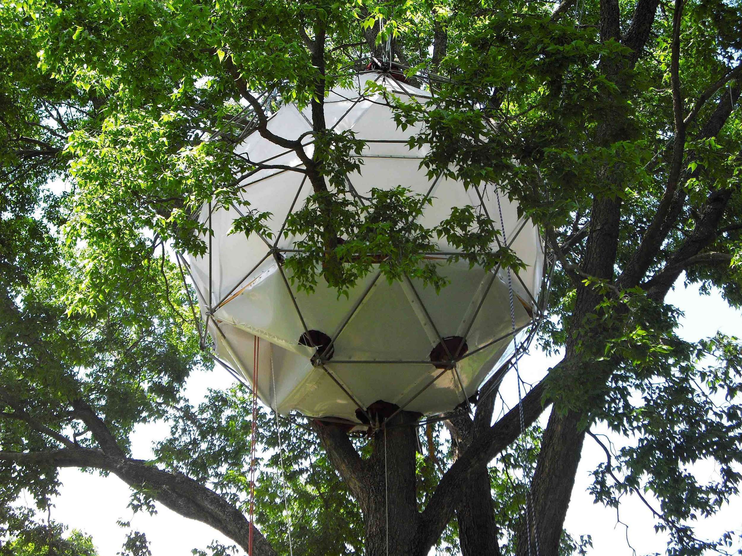 Gardner-TreeDay.jpg