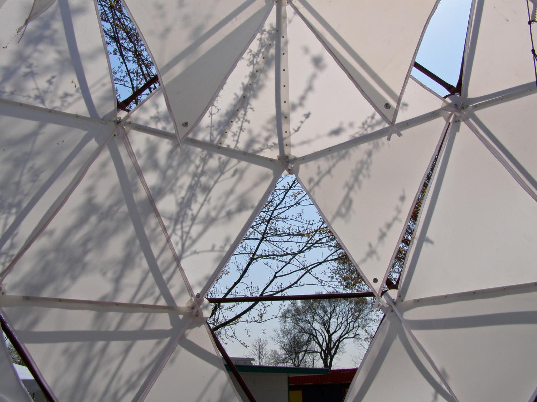 LivingGreen-CanopyInterior.jpg