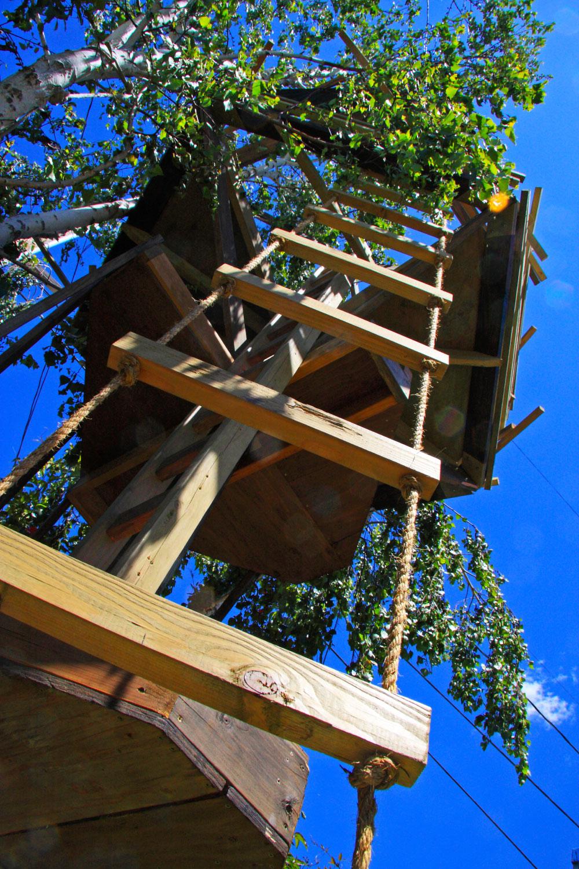 TreeTower-RopeLadder.jpg