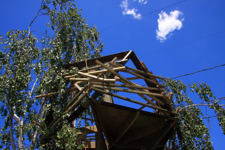 TreeTower-HorzDay.jpg
