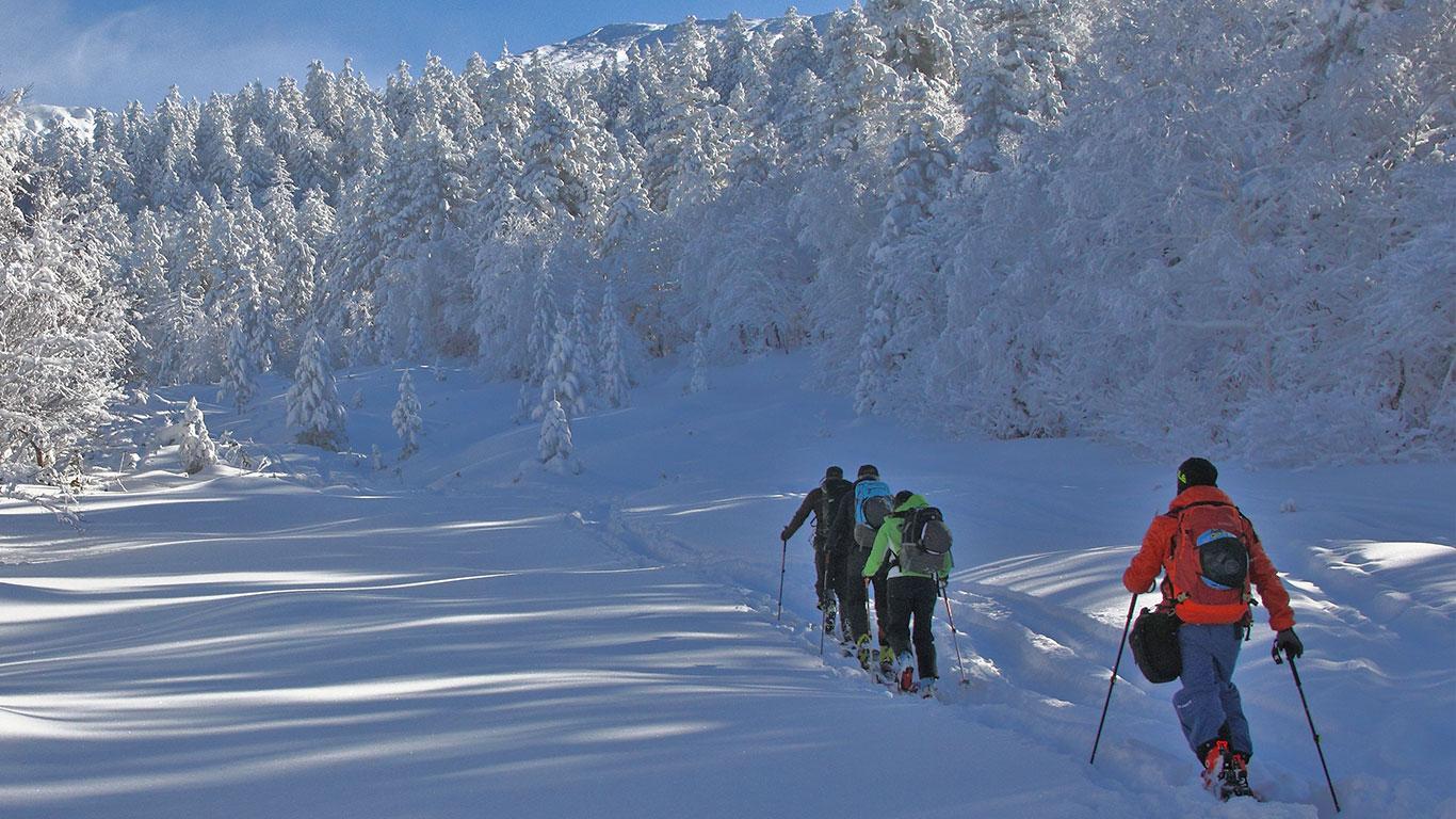 Hokkaido backcountry ski school
