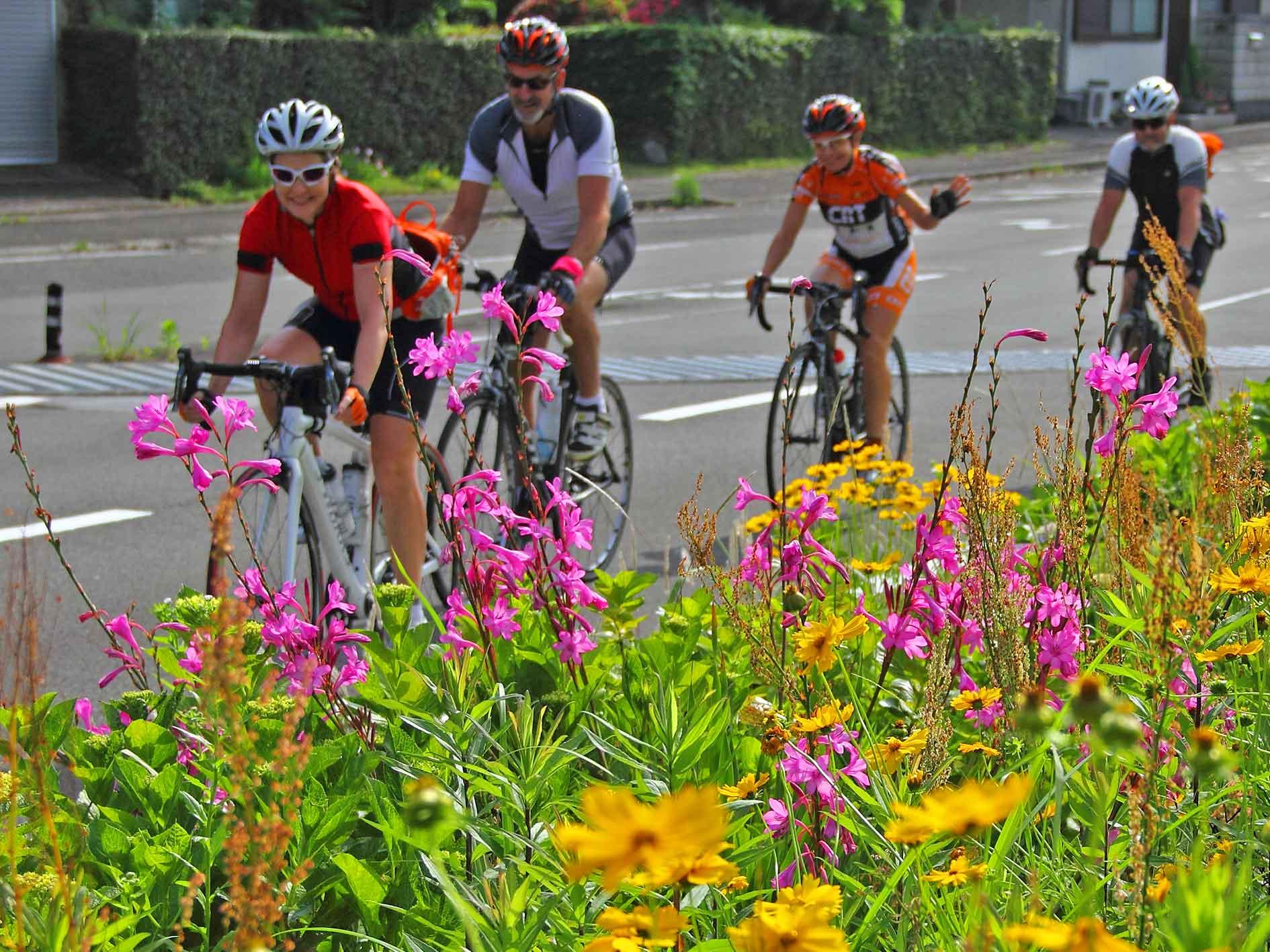 Cycle Tour Shikoku