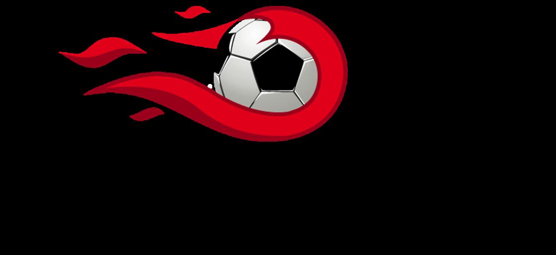 logo futuri campioni.png
