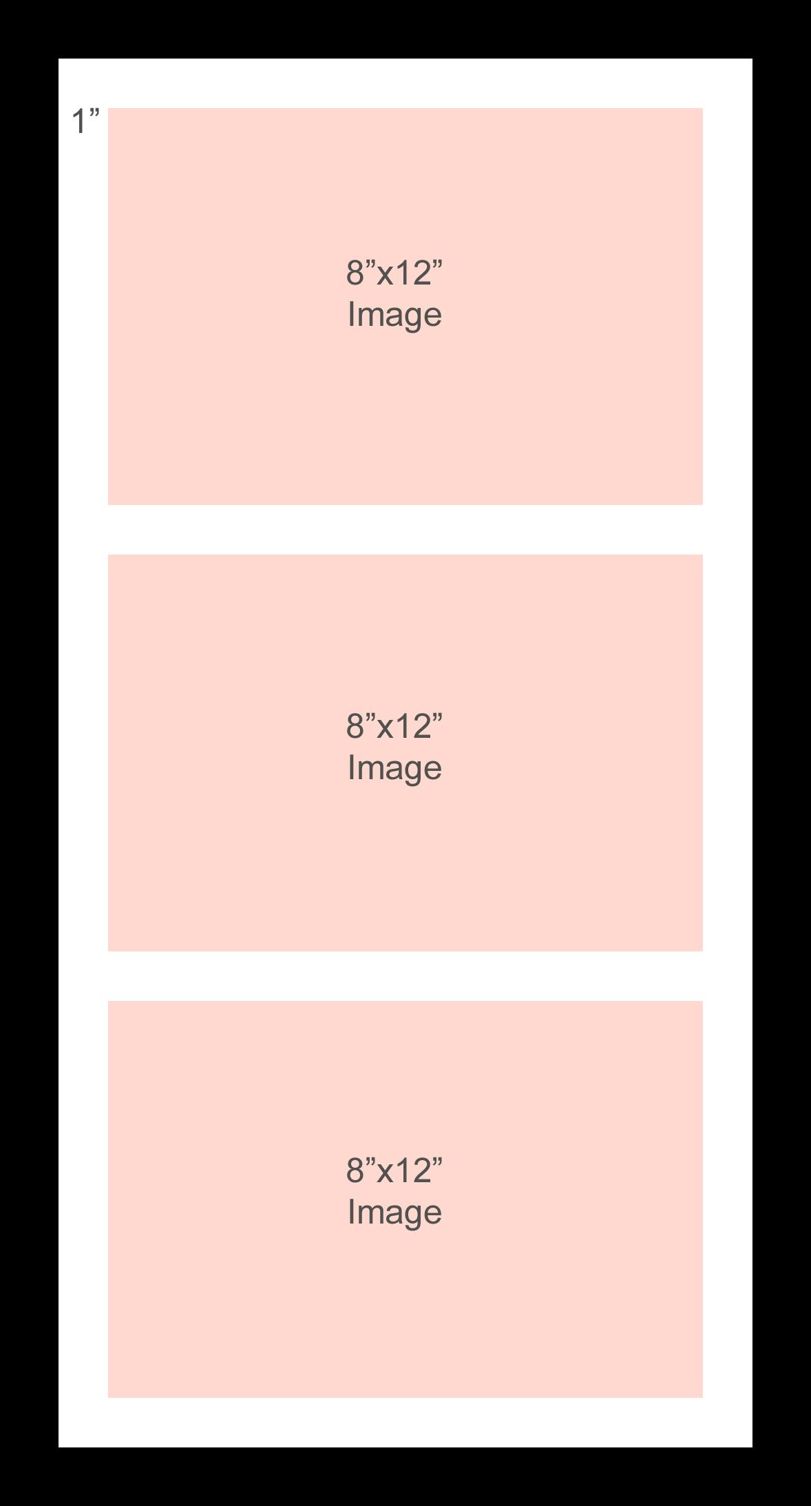 Three 8x12%22 window multi frame (verticaldesign).jpg