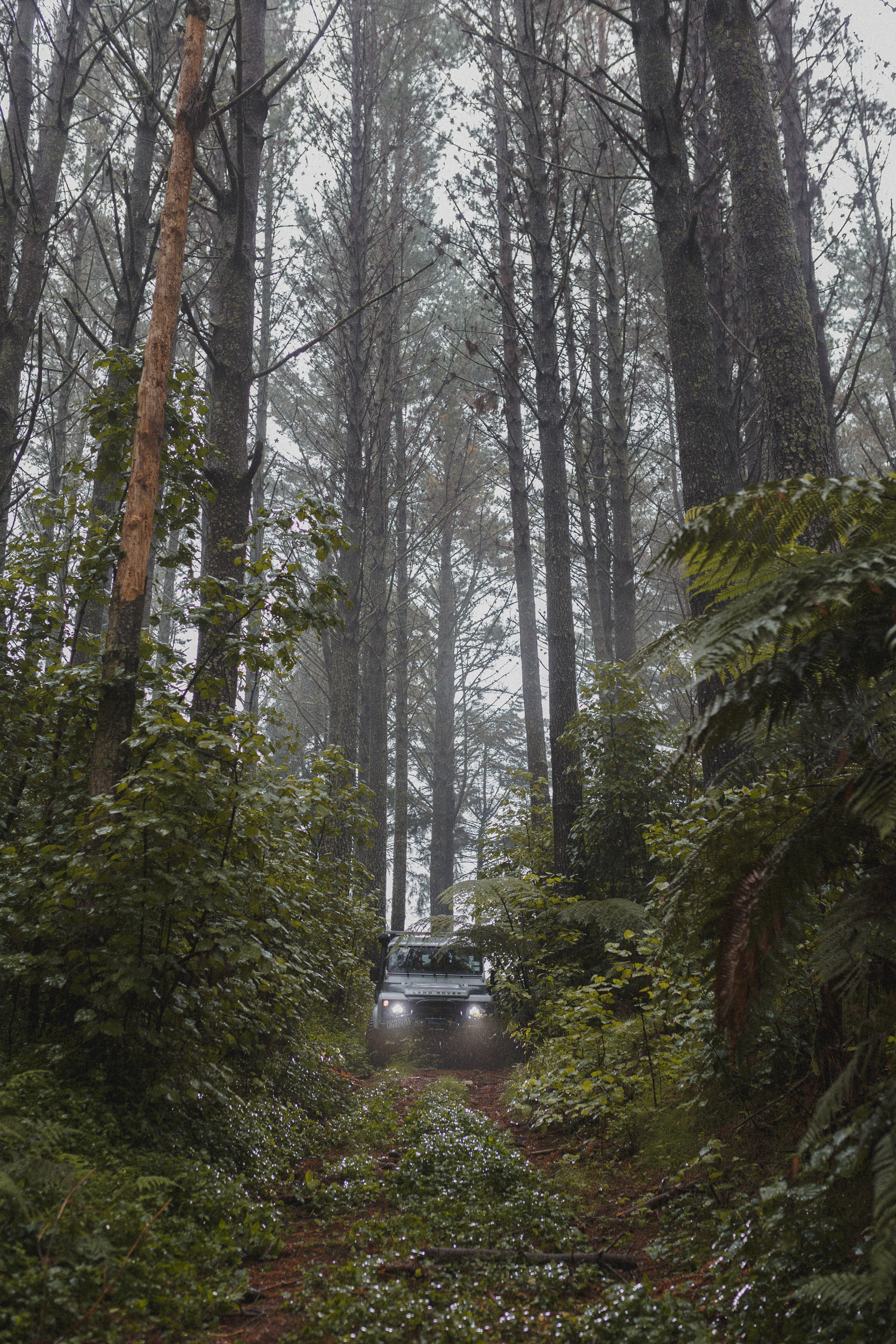 Forest-Lane-Goods_Product-Photography_New-Zealand_08.jpg