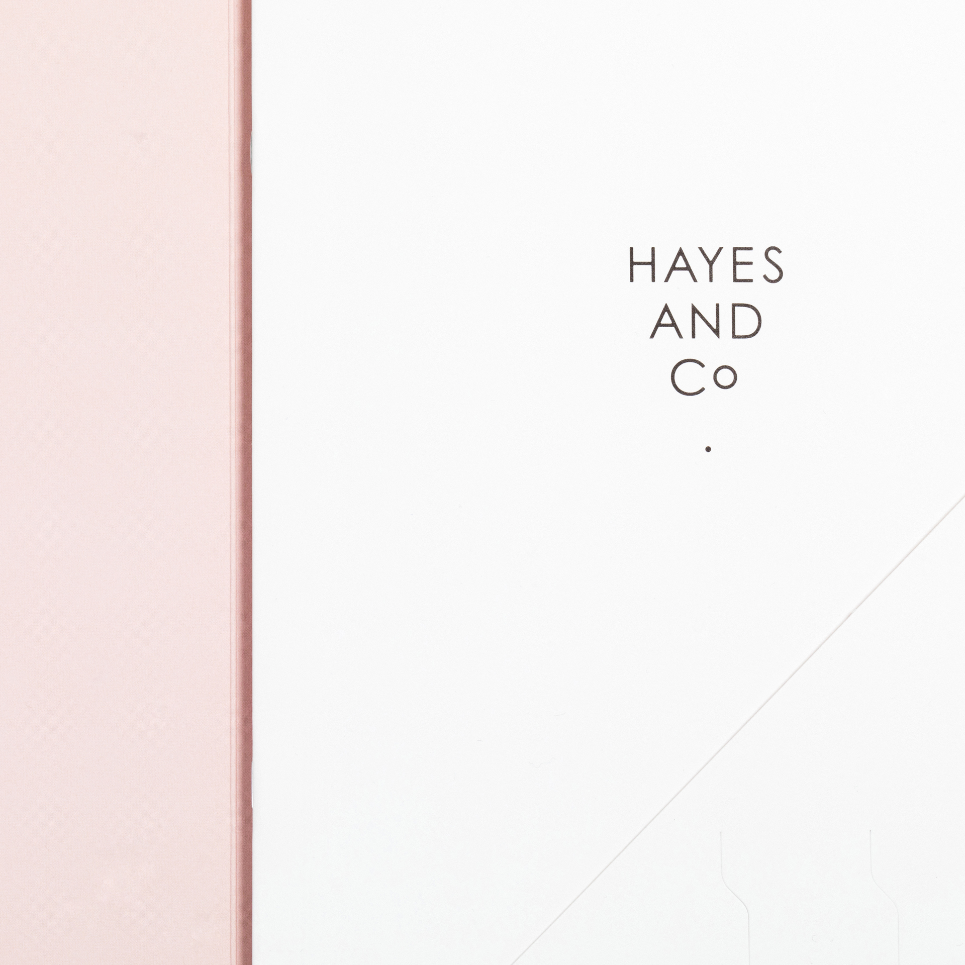 Hunter-Studio_Hayes-and-Co_Brand-Identity_Design_New-Zealand07.jpg