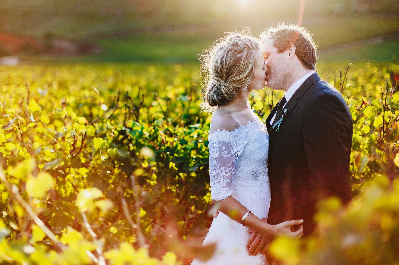 Wedding Couple Portrait in A Vineyard