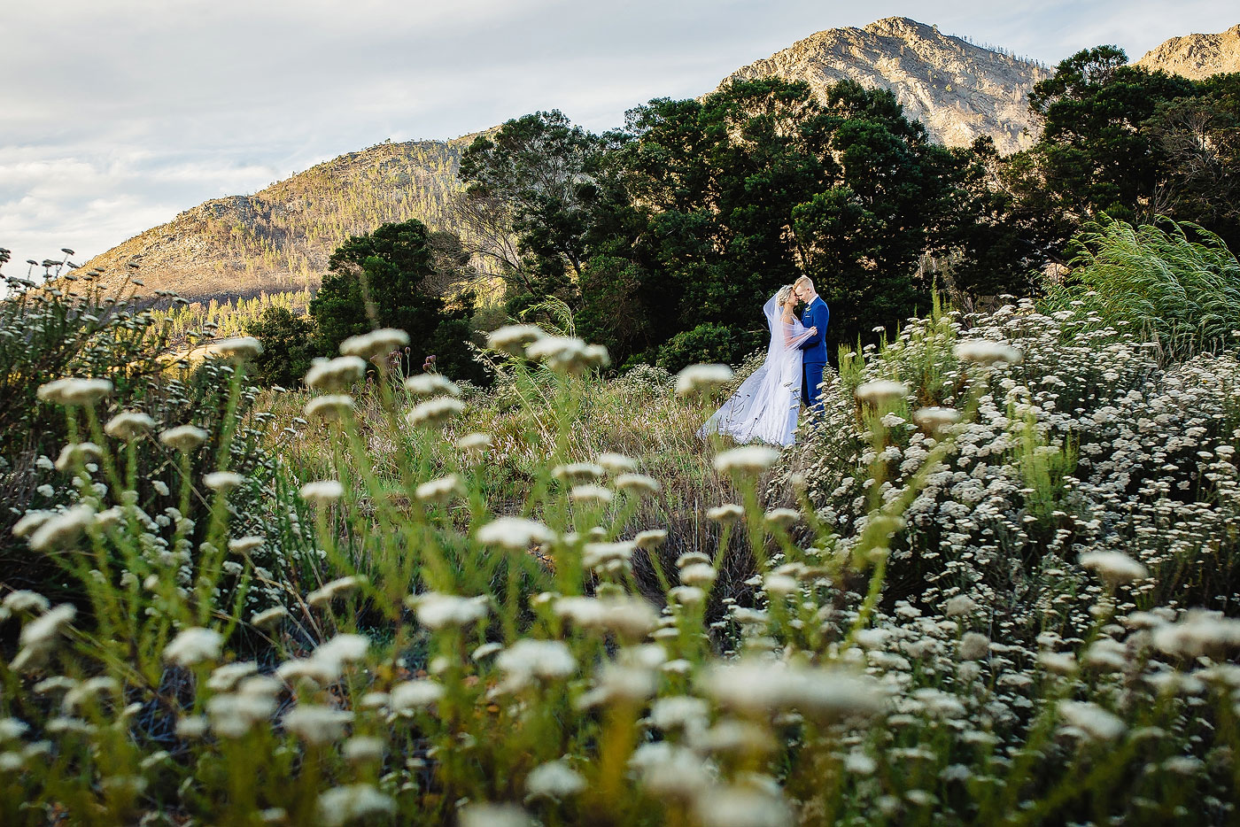 Natural Wedding Photo in Fynbos
