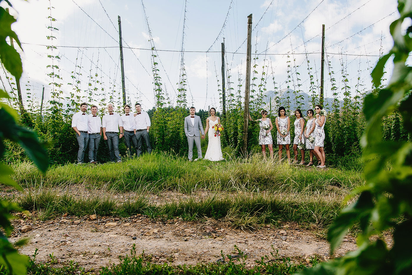 Large Wedding Bridal Party in a field of Hops.
