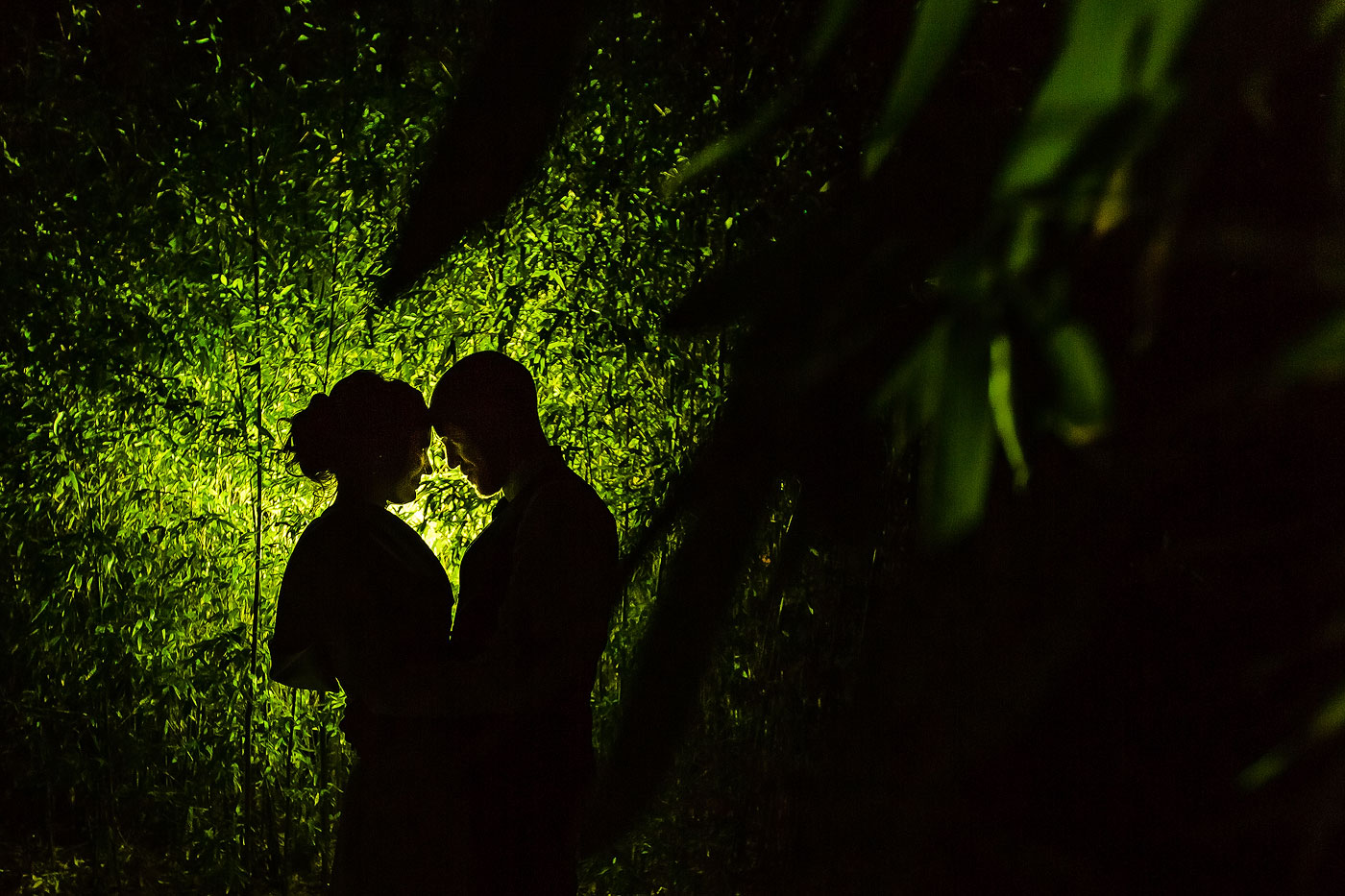 Creative Bamboo Wedding Evening Photo