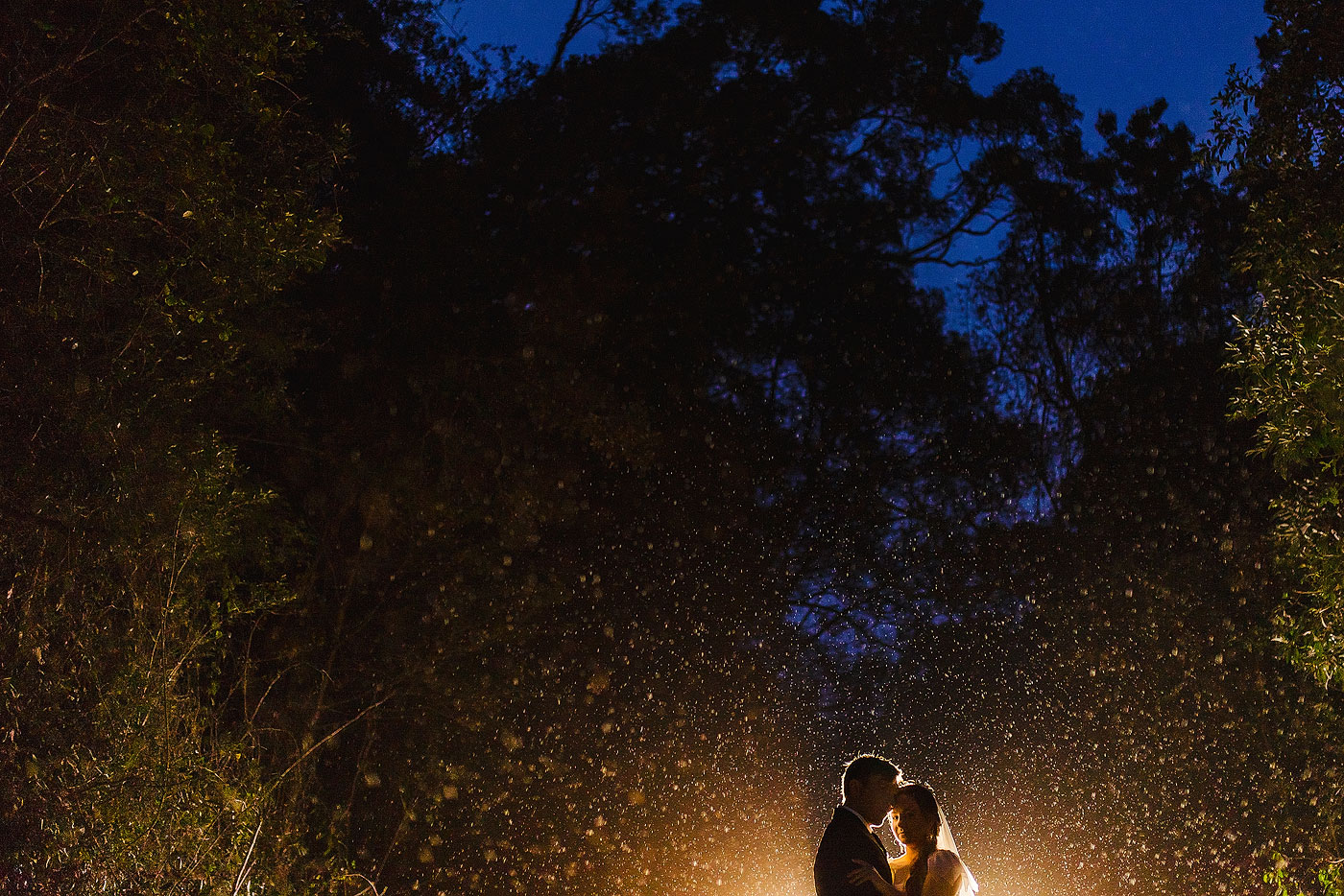 Rain Wedding Photo in the Forest