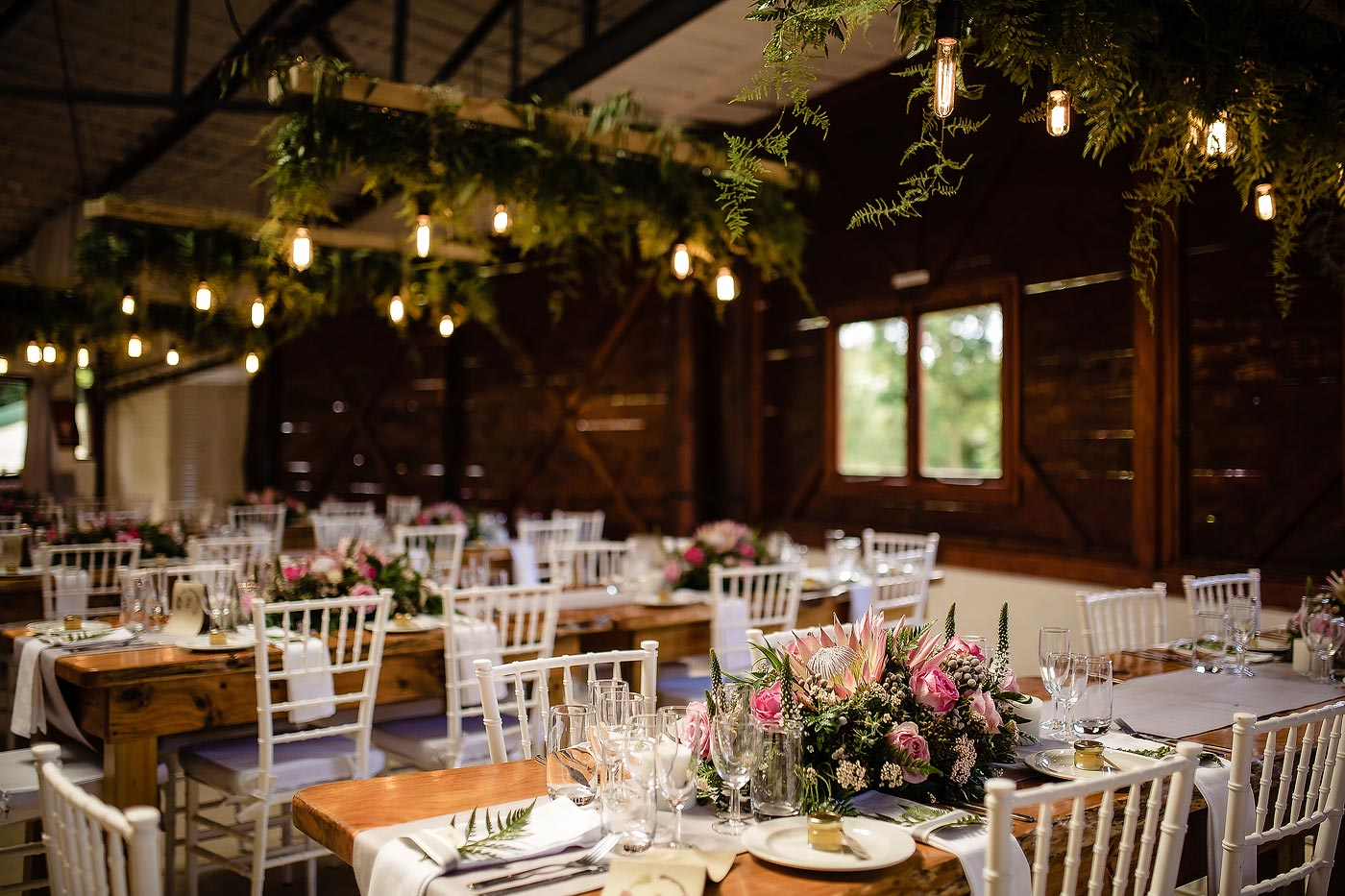Rustic Wedding decor in a barn with roses and ferns and naked bulbs.
