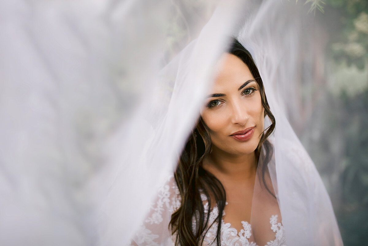 Elegant Bridal Portraits with veil in Northern Cape