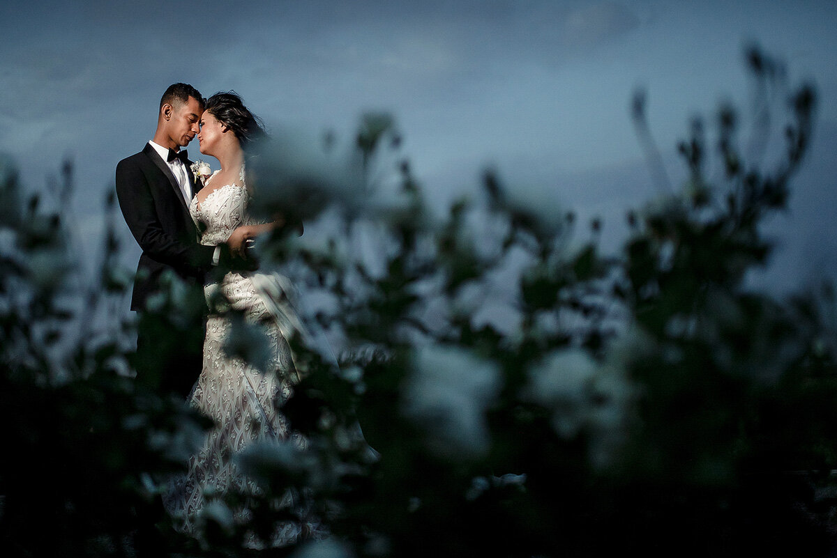 Elegant Wedding Couple Portraits in the early evening on a wine farm in Upington.